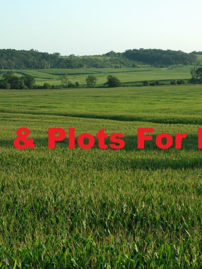 Land & Plots for Rent